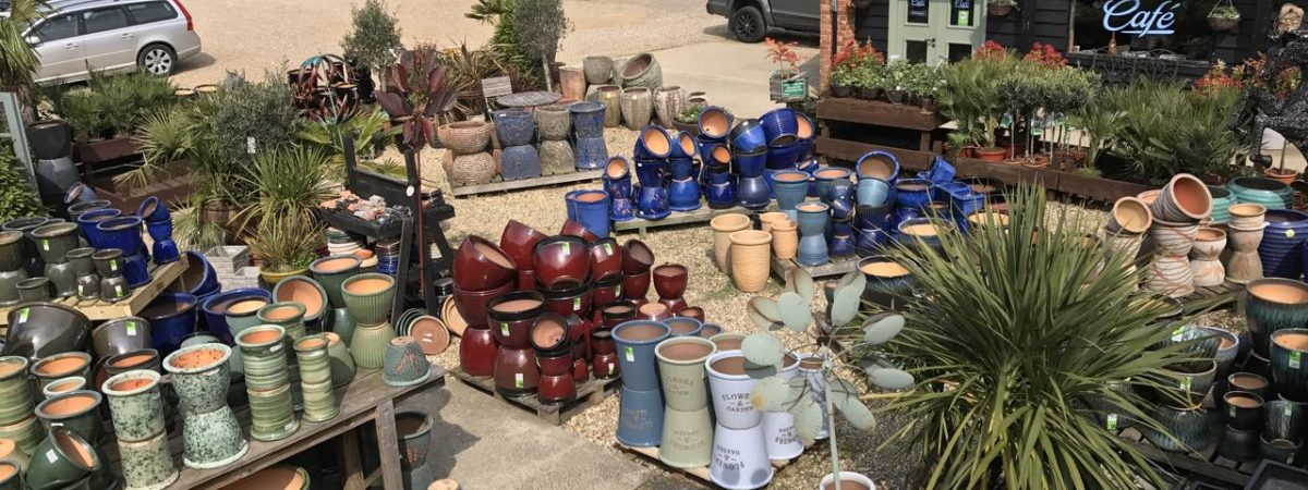 Huge selection of Frost Proof Terracotta, Terrazzo, Glazed, Fibre Clay, Black Clay Pots