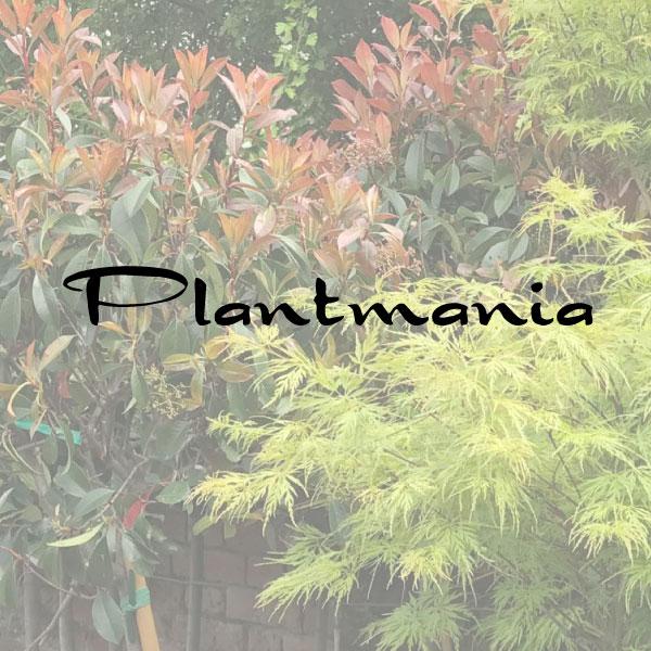 plantmania
